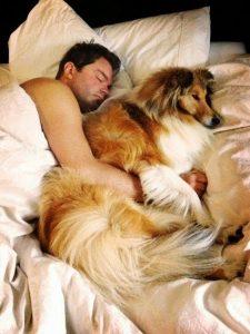 man-slaapt-met-hond